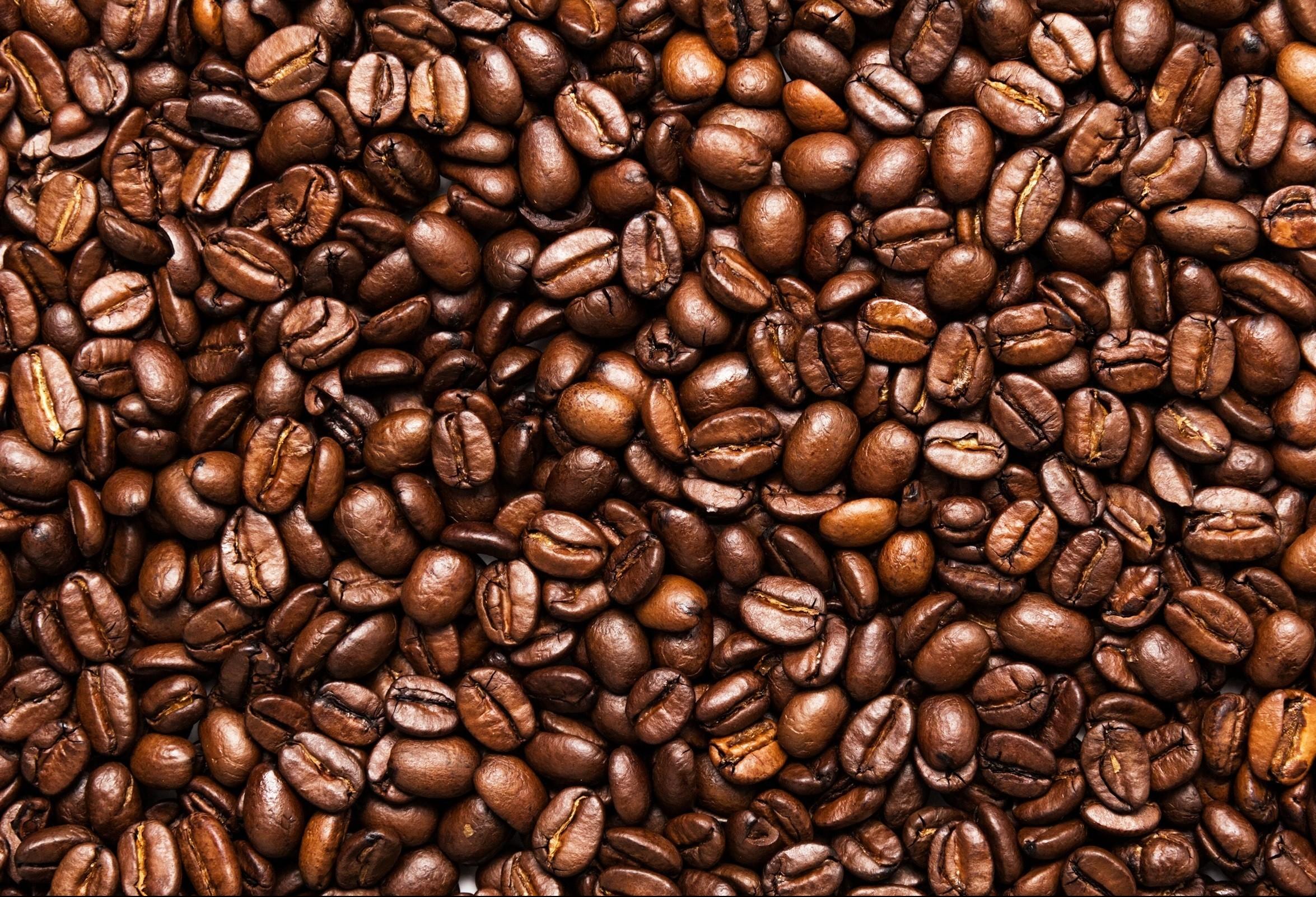 Café em coco custa R$ 6,20 kg na região de Maringá