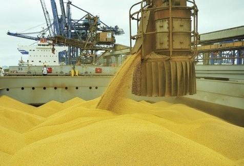 Brasil é o 2º maior exportador mundial de alimentos em volume