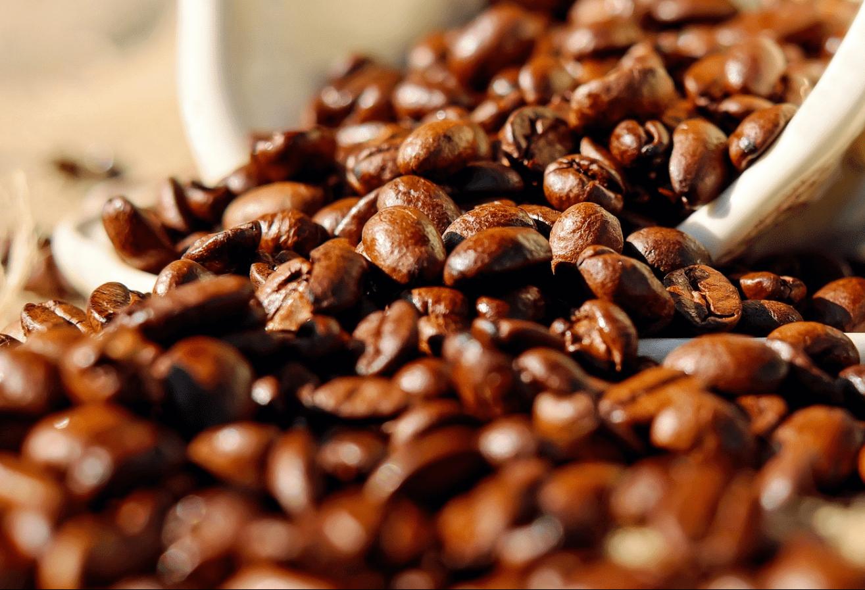 Café em coco custa R$ 7 kg em Jacarezinho