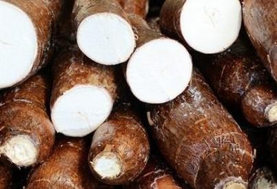 Cotações de produtos agrícolas: terça-feira [17 de setembro]