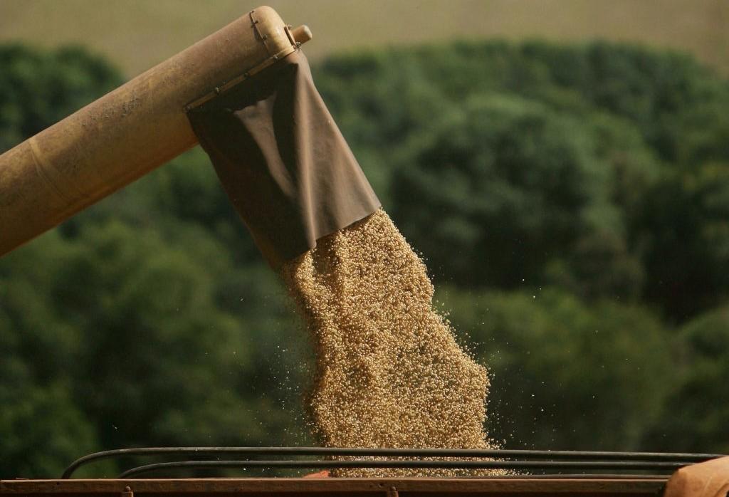 Produtor brasileiro de soja deve segurar as vendas, dizem analistas