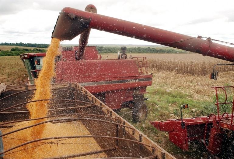 Safra 2018/19 de soja no Paraná deve colher 12% a menos que a anterior