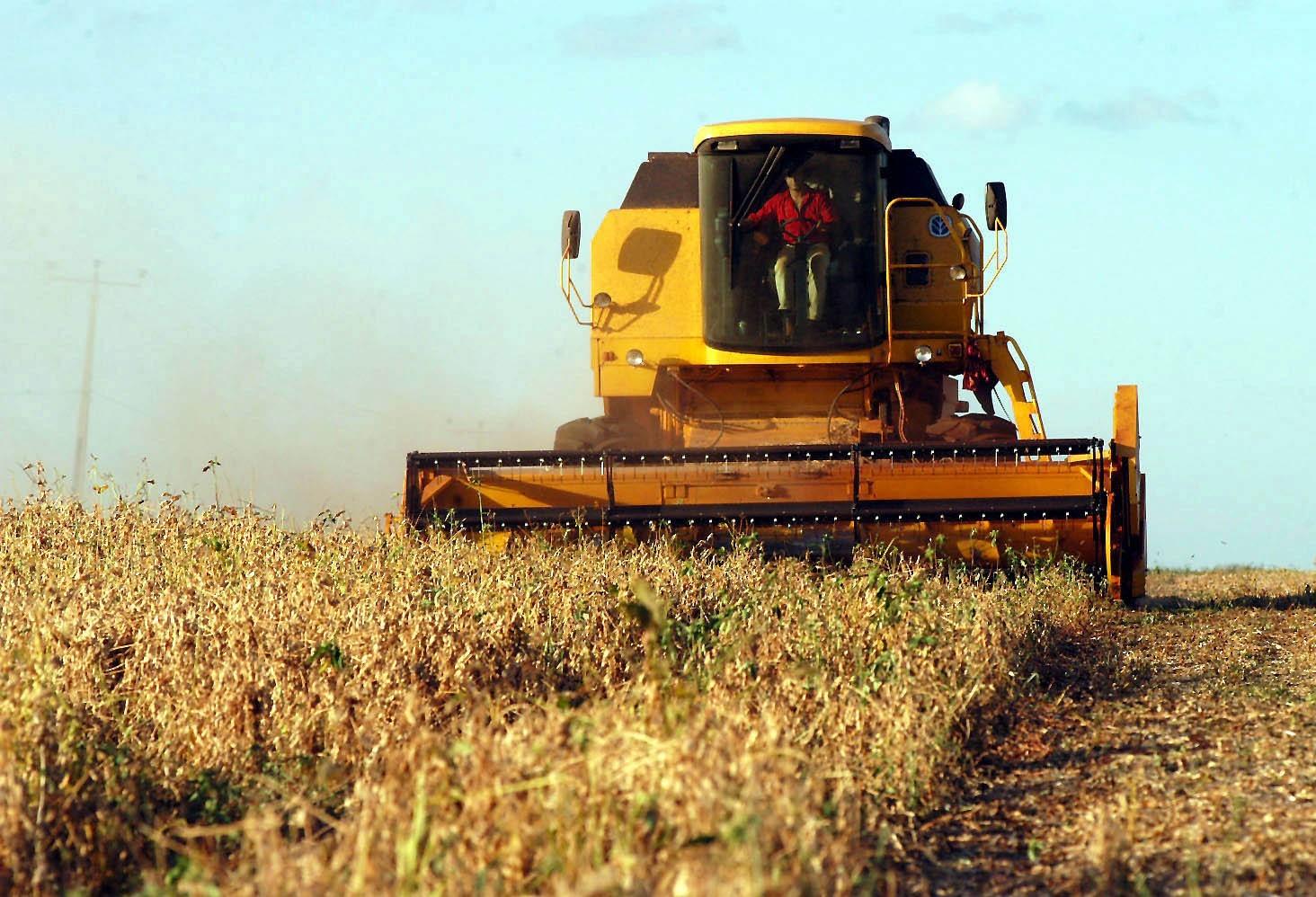 Mesmo em queda, soja rende lucro de 16% para o sojicultor brasileiro