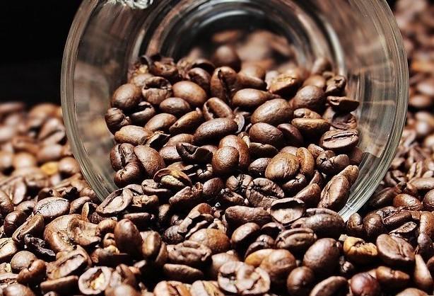 Café em coco custa R$ 6,20 kg em Maringá