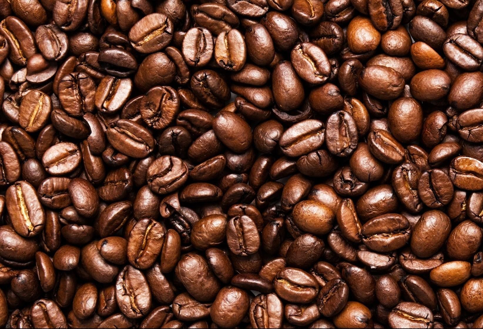 Café em coco custa R$ 6 kg em Maringá