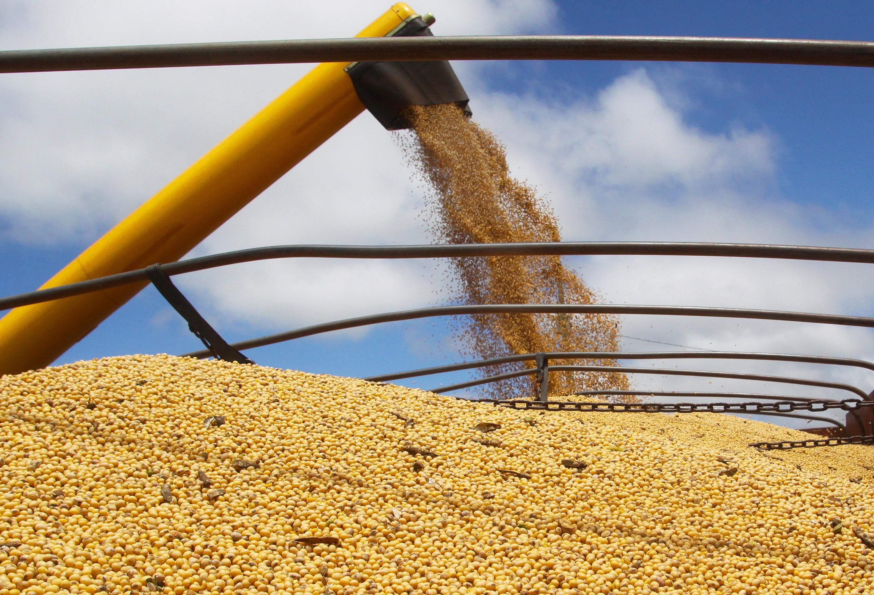 Por causa do clima, colheita da safra de verão inicia com atraso