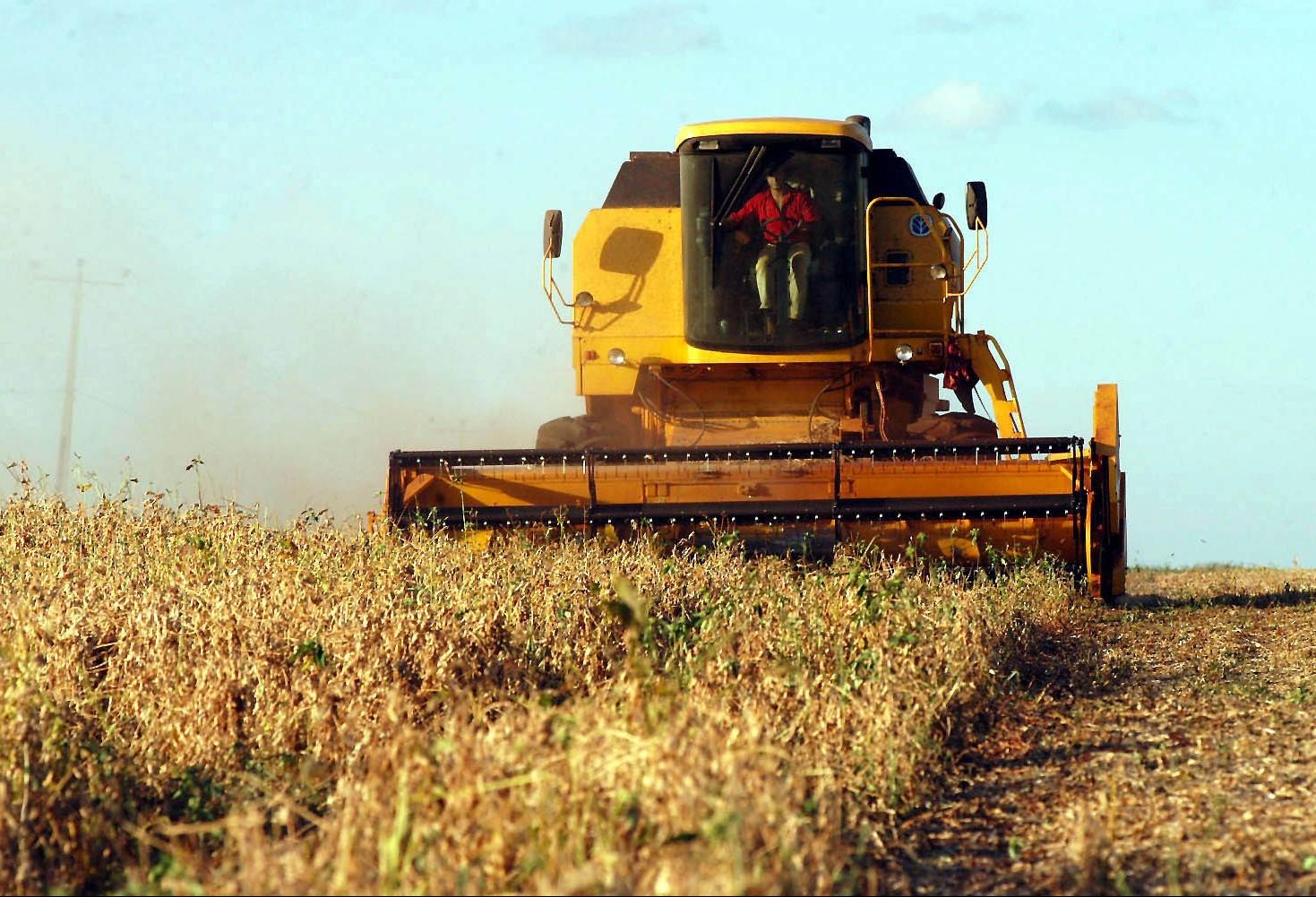 Plantio antecipado e forte calor adiantam colheita da soja no Paraná