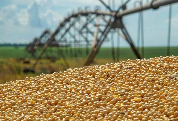 Deral estima que a produção de grãos 2018/19 deve ser 5% superior à safra anterior