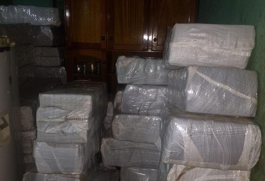 Denarc Maringá apreende quase oito toneladas de maconha