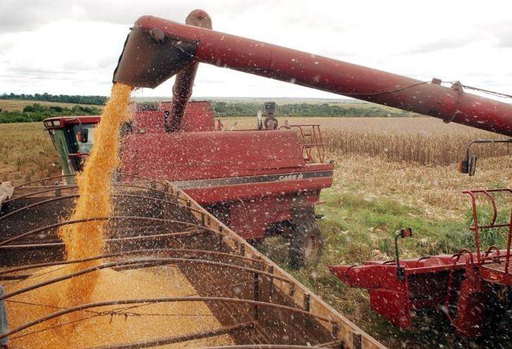 Brasil amplia em 29% as vendas externas de soja em relação a 2018