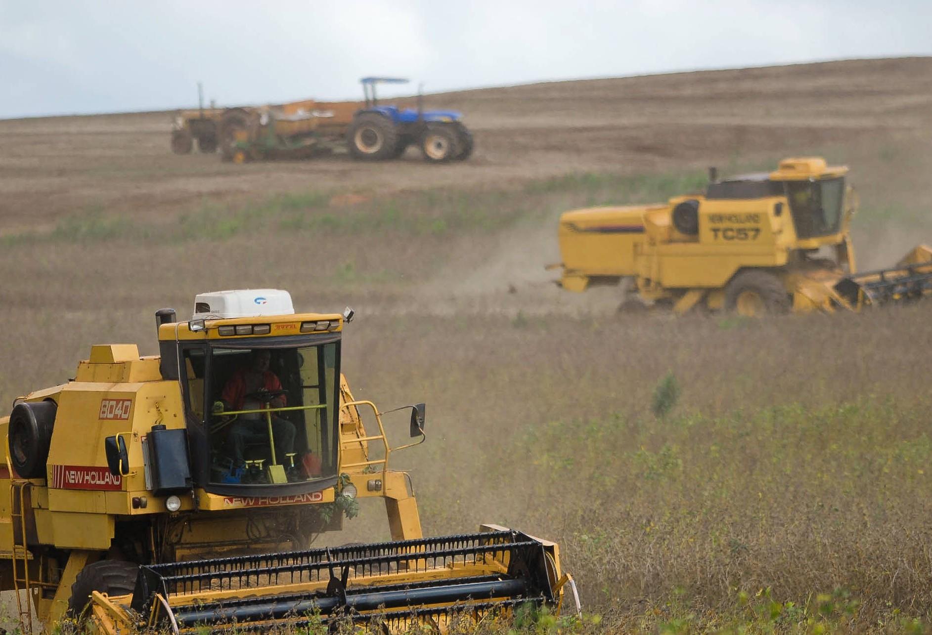 Rentabilidade do cultivo da soja gerou retorno de quase 50% para o produtor