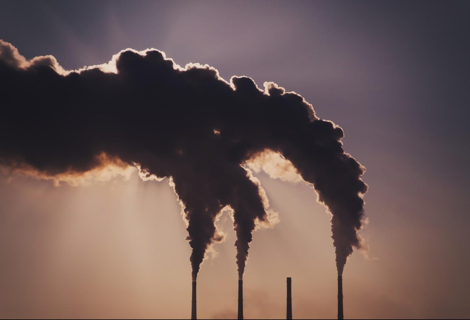"""A economia precisa se descarbonizar"""