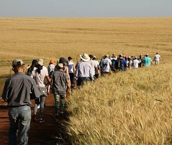 Caminhadas na Natureza terão 160 circuitos no Paraná este ano