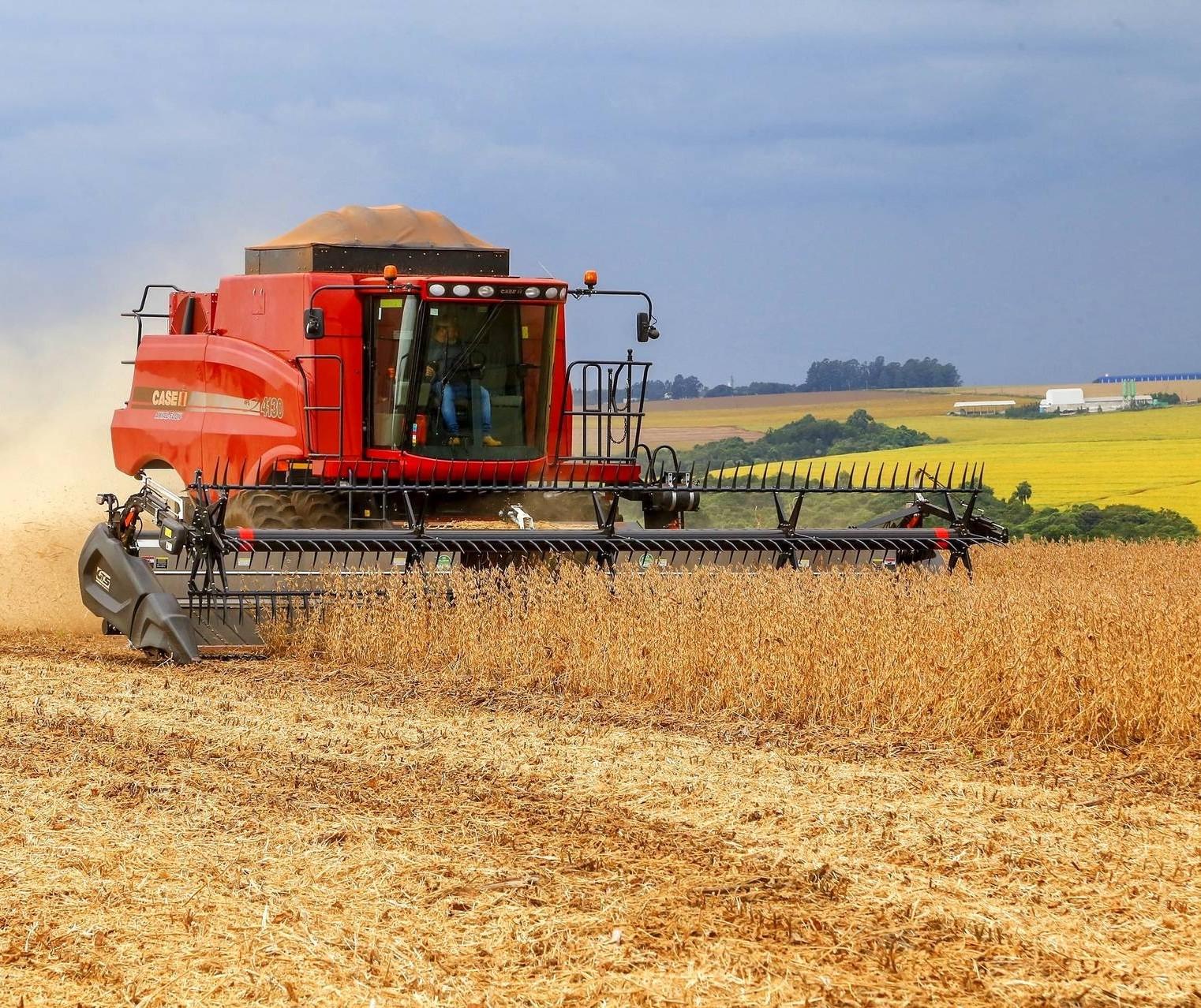 Comecialização da soja brasileira avançou pouco em junho, aponta pesquisa