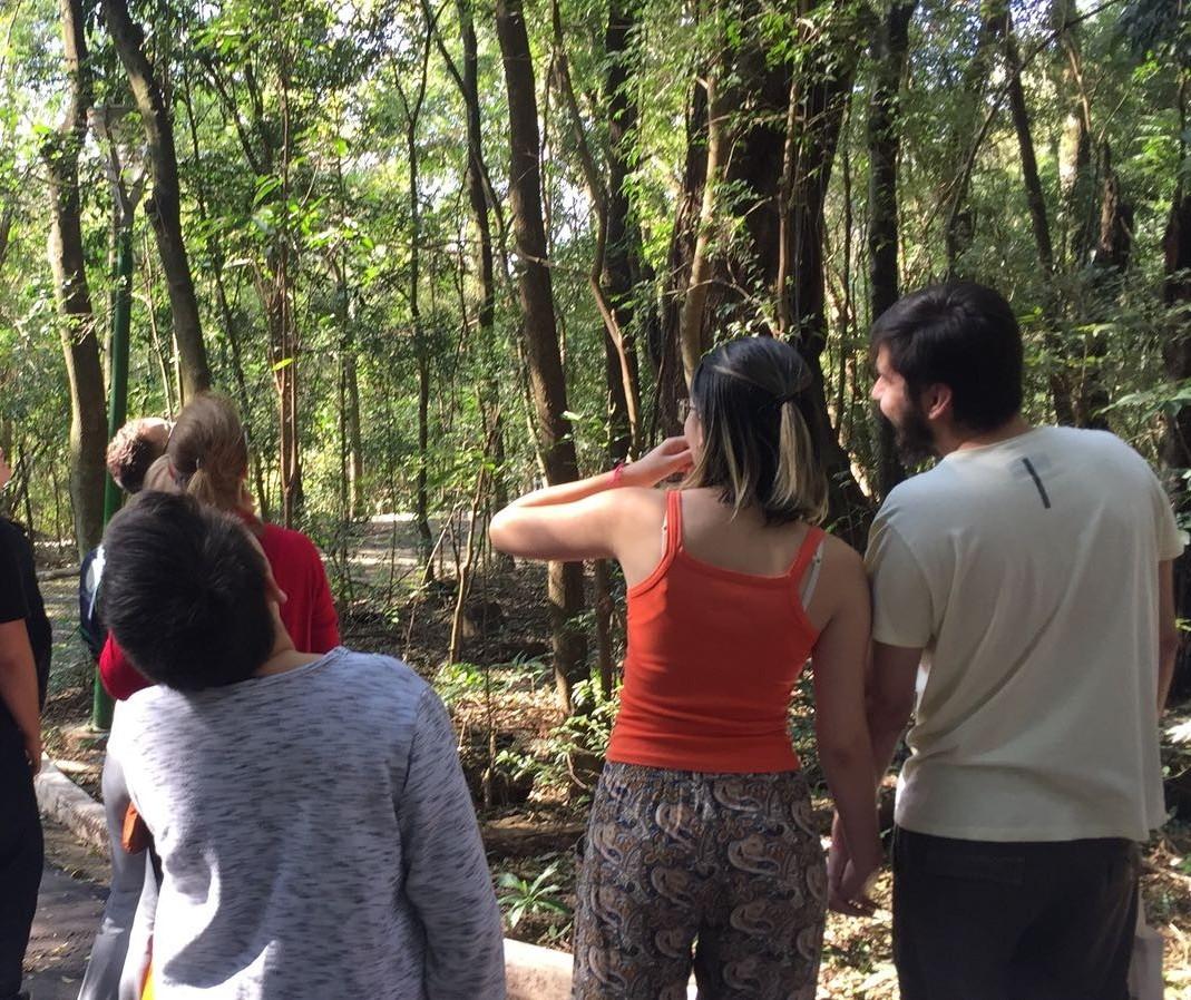 """Pássaringá"" apresenta aves aos interessados em Maringá"