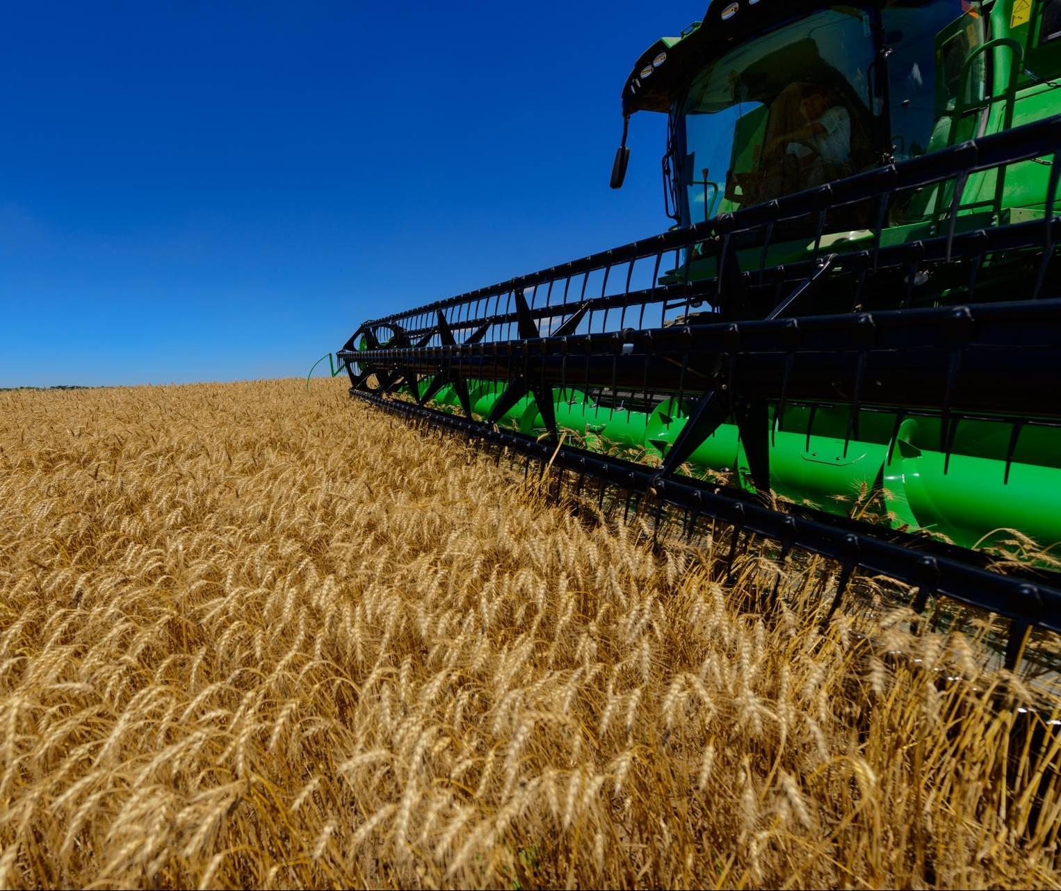 Cresce população ocupada no agronegócio, mostra estudo