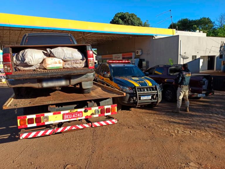 Polícia apreende duas camionetes com mais de 1 tonelada de agrotóxicos