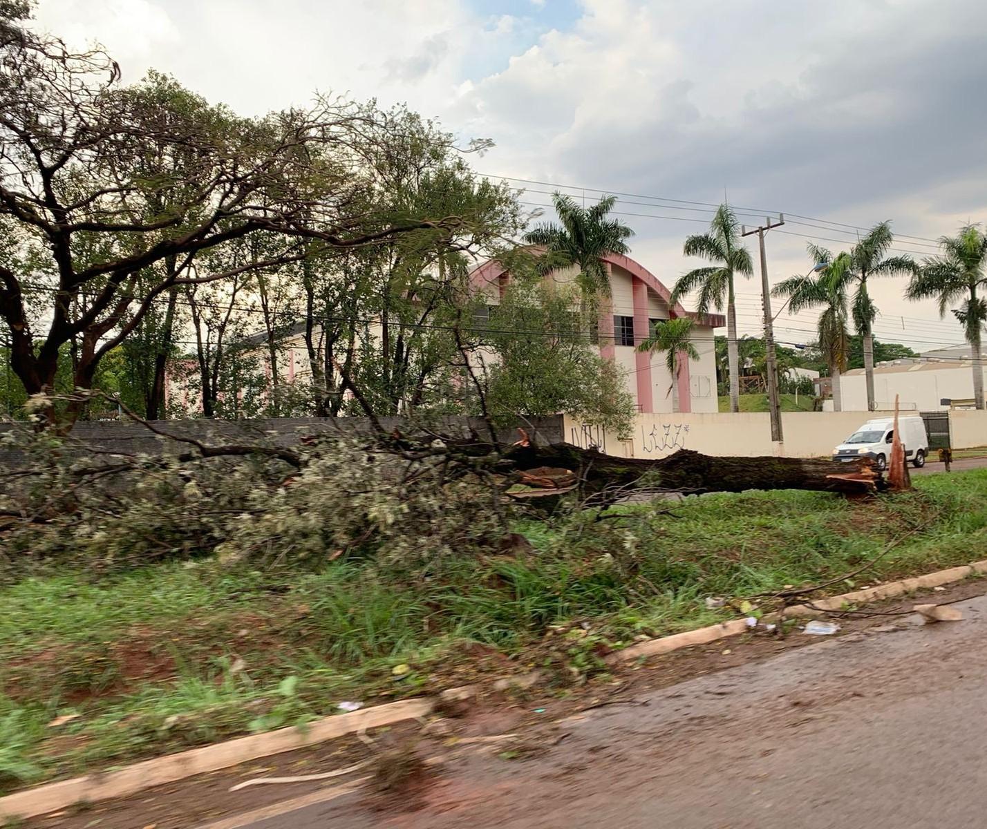 Temporal rápido deixa 30 mil imóveis sem energia e muitos estragos em Maringá