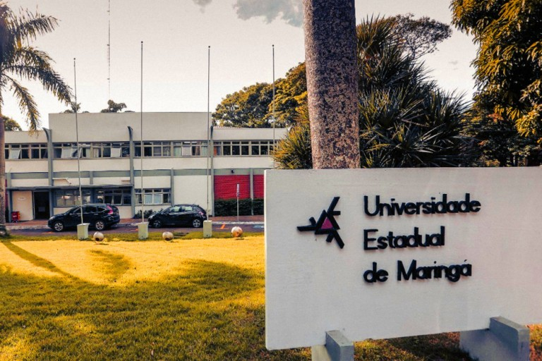 UEM é uma das universidades do mundo com mais mulheres pesquisadoras