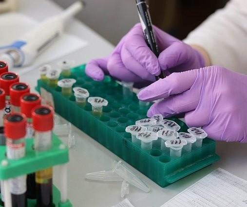 Coronavírus em Maringá: Veja os dados do boletim desta quinta-feira (13)