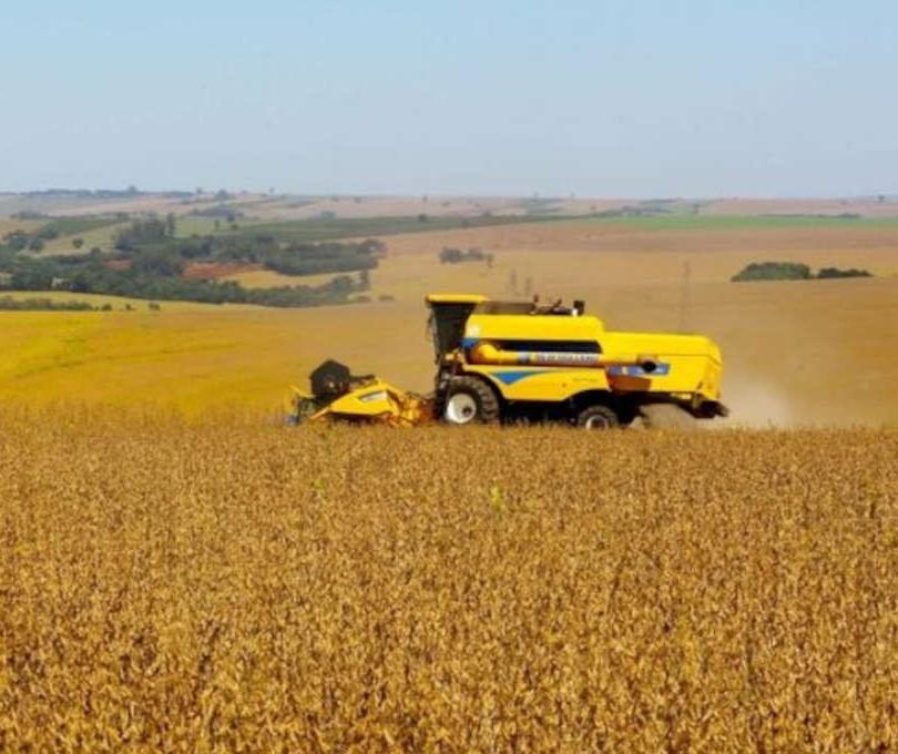 Agricultura estima VBP da Agropecuária em R$ 1,1 trilhão