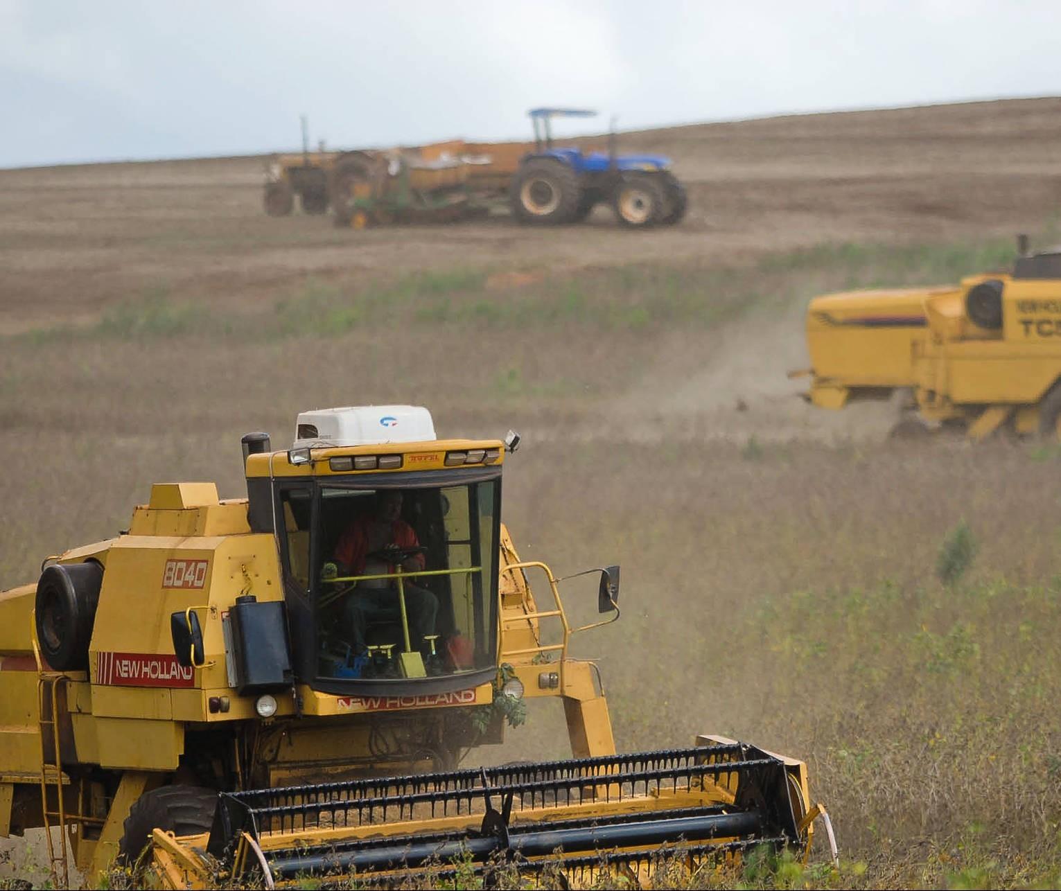 Seca pode afetar produção rural neste inverno