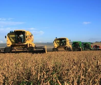 Brasil deve produzir 124 milhões de toneladas de soja na safra 2019/20