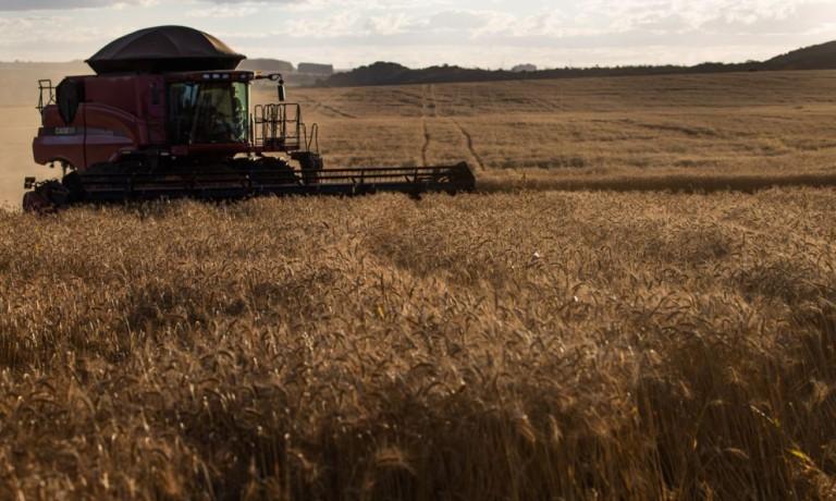 Mesmo com a pandemia, agronegócio brasileiro apresentou bons resultados em 2020