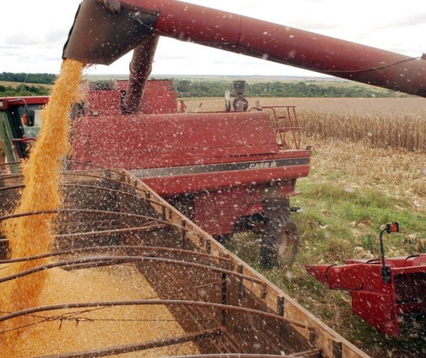 Expectativas de mercado para a safra de soja 2021/22 que está começando