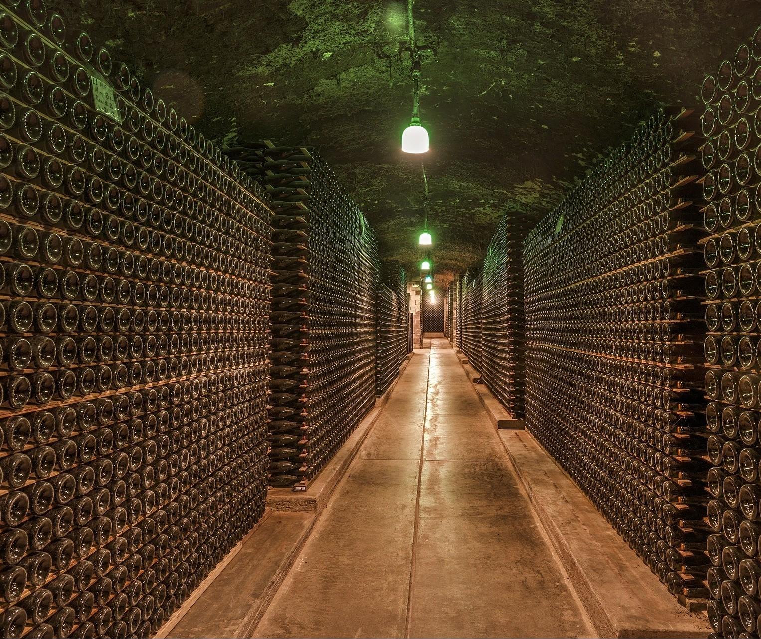 A imensa diversidade de vinhos