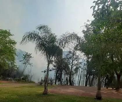 Incêndio atinge reserva florestal do Parque das Palmeiras em Maringá