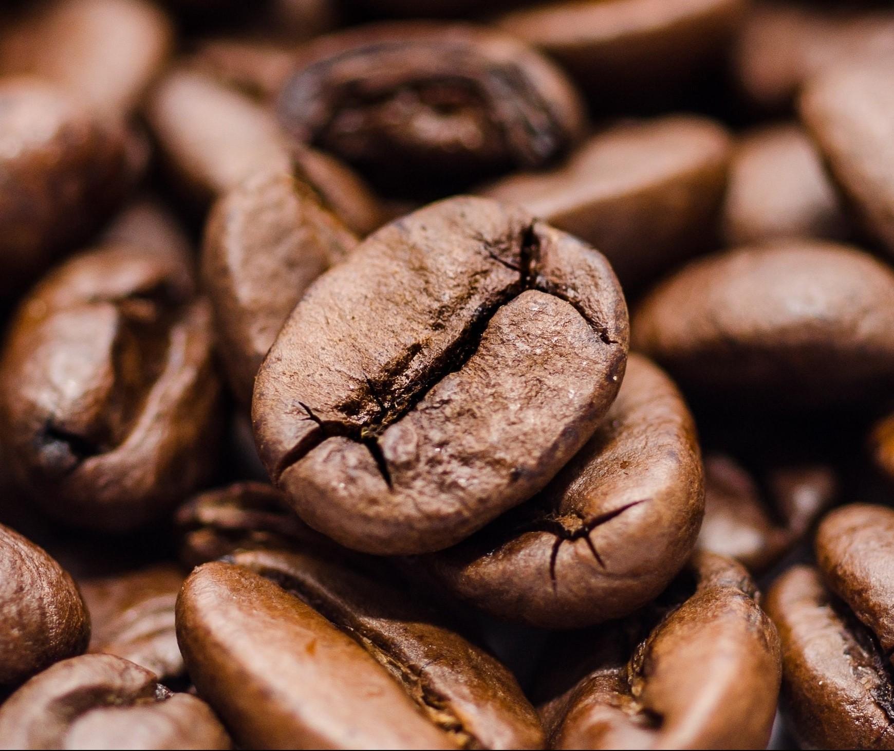 Café em coco custa R$ 7,33 o quilo em Maringá