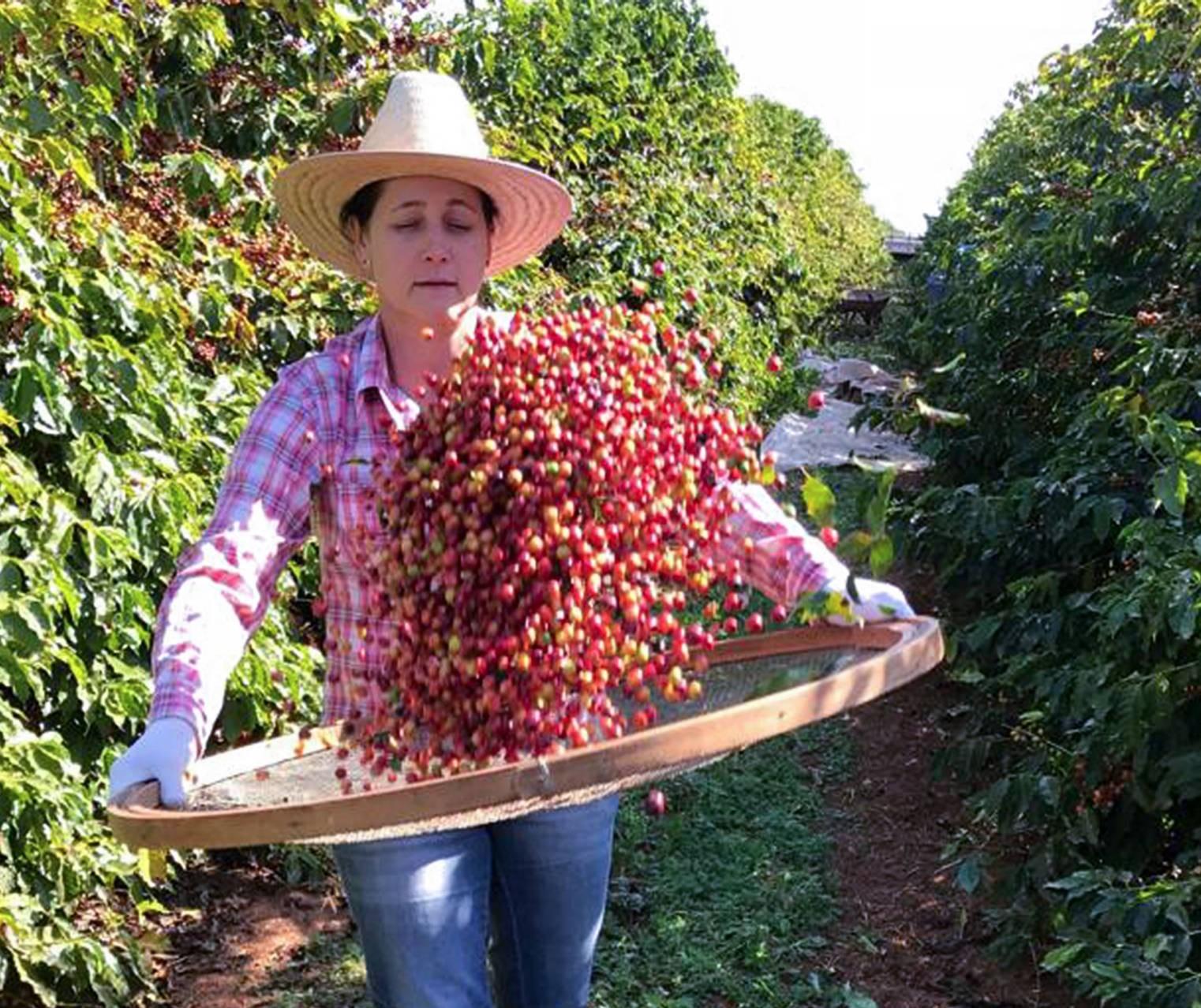 15 de outubro: Dia Internacional da Mulher Rural