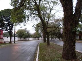 Domingo de chuva e tempo nublado em Maringá e previsão de geada para terça-feira