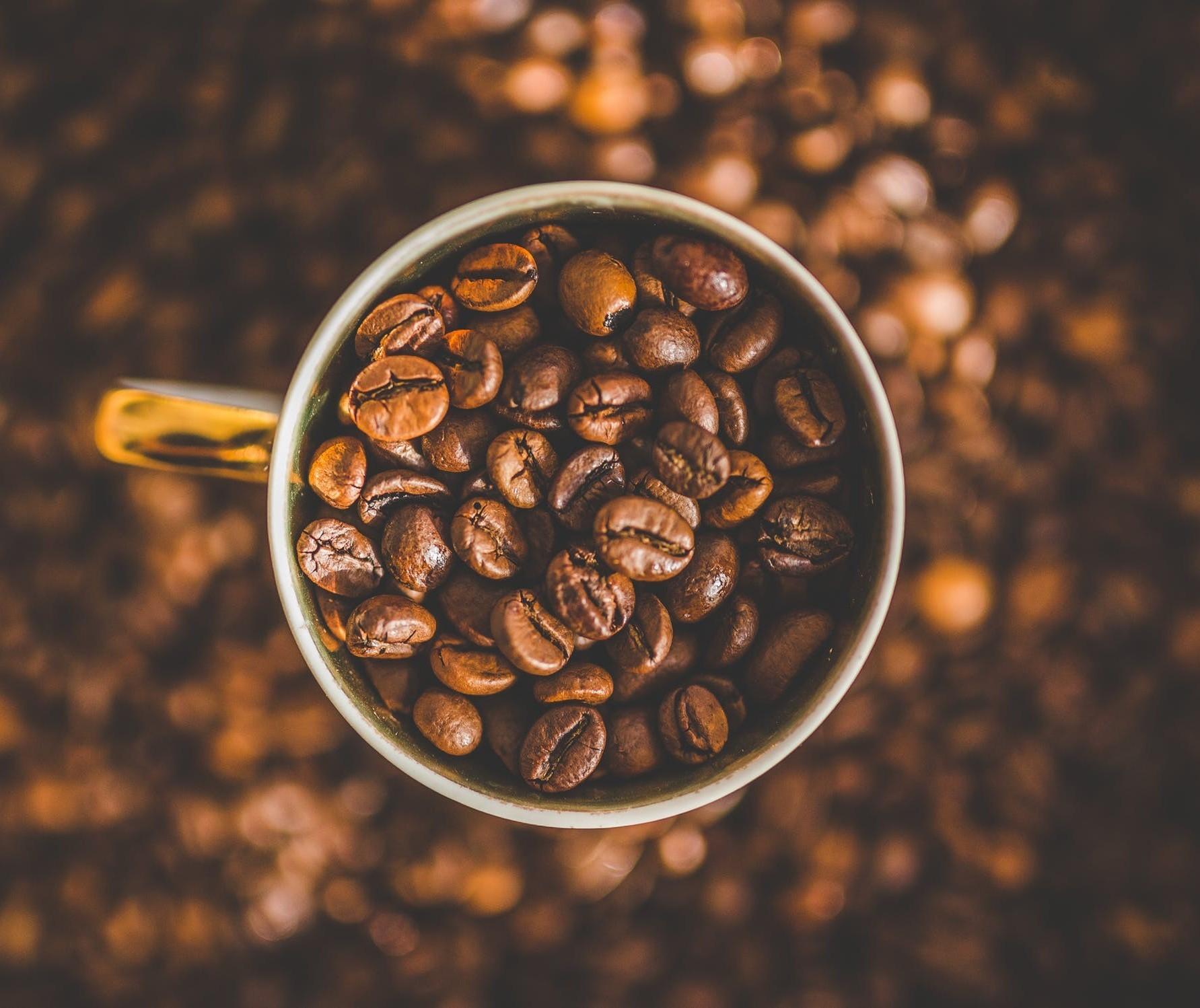Café em coco custa R$ 7,66 o quilo em Maringá