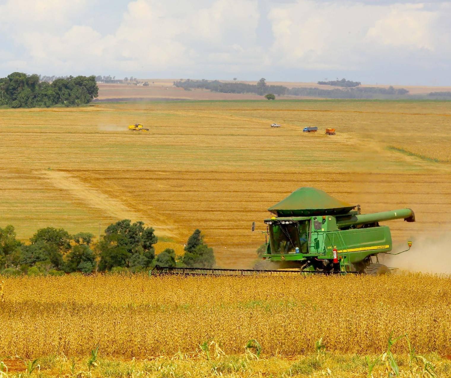 Plantio da safra 2021/2022 já está autorizado em grande parte do Brasil
