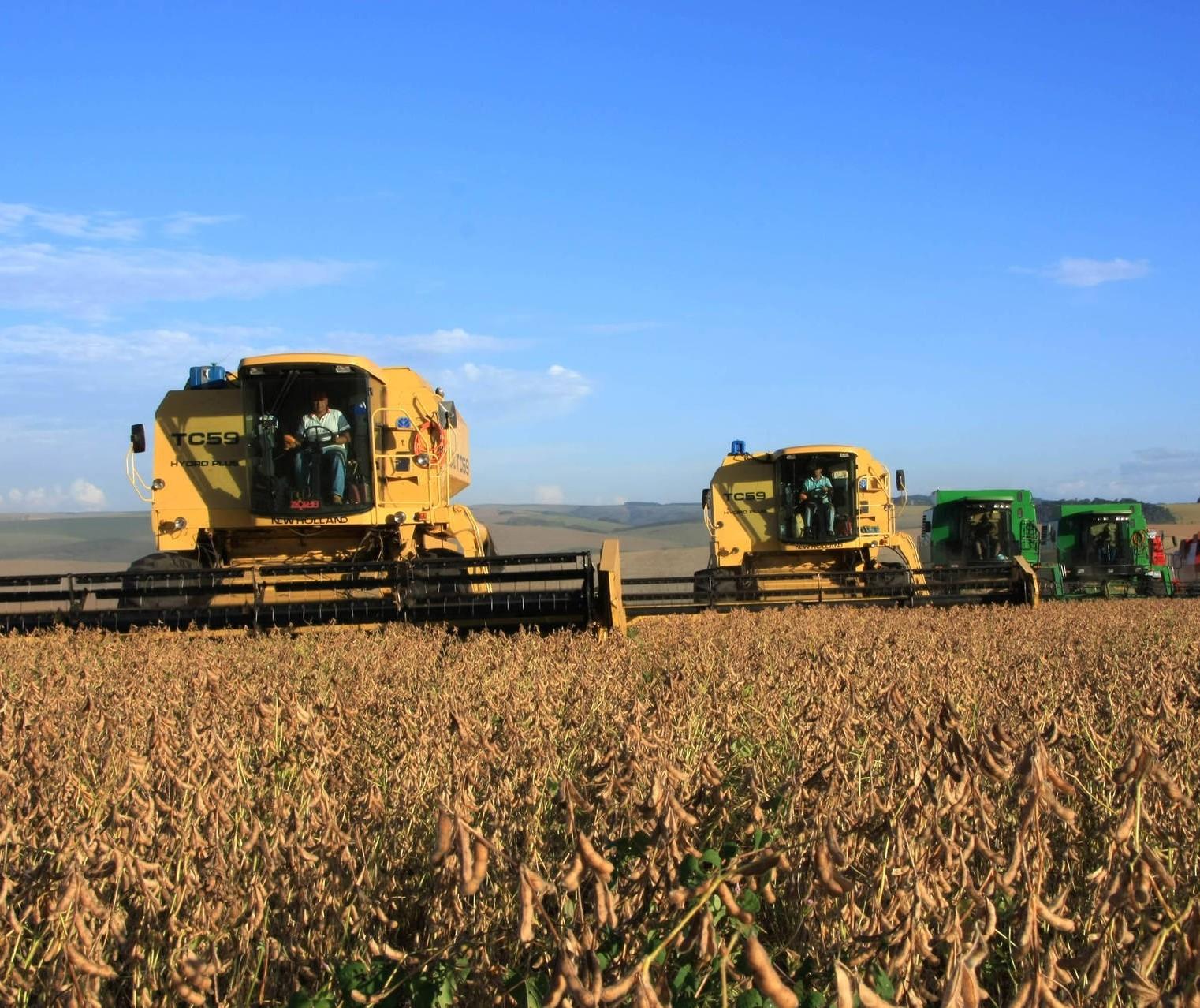 Qual será o futuro do agronegócio brasileiro?