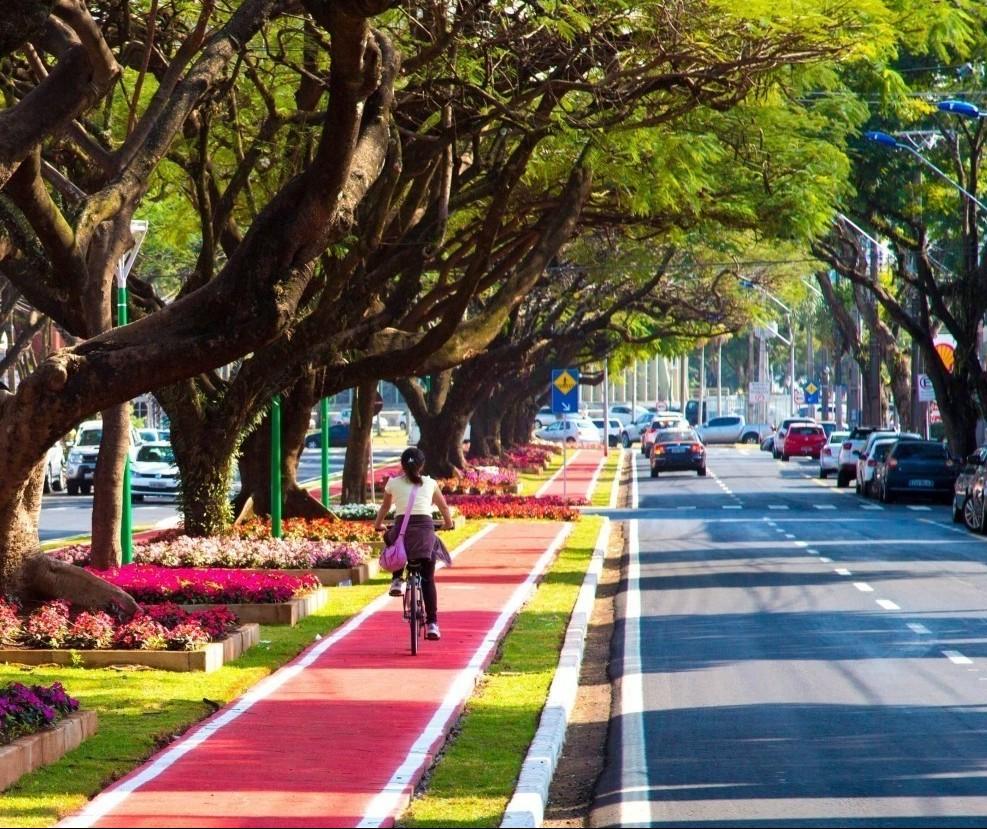 Consulta pública do Plano de Arborização encerra nesta segunda (29)