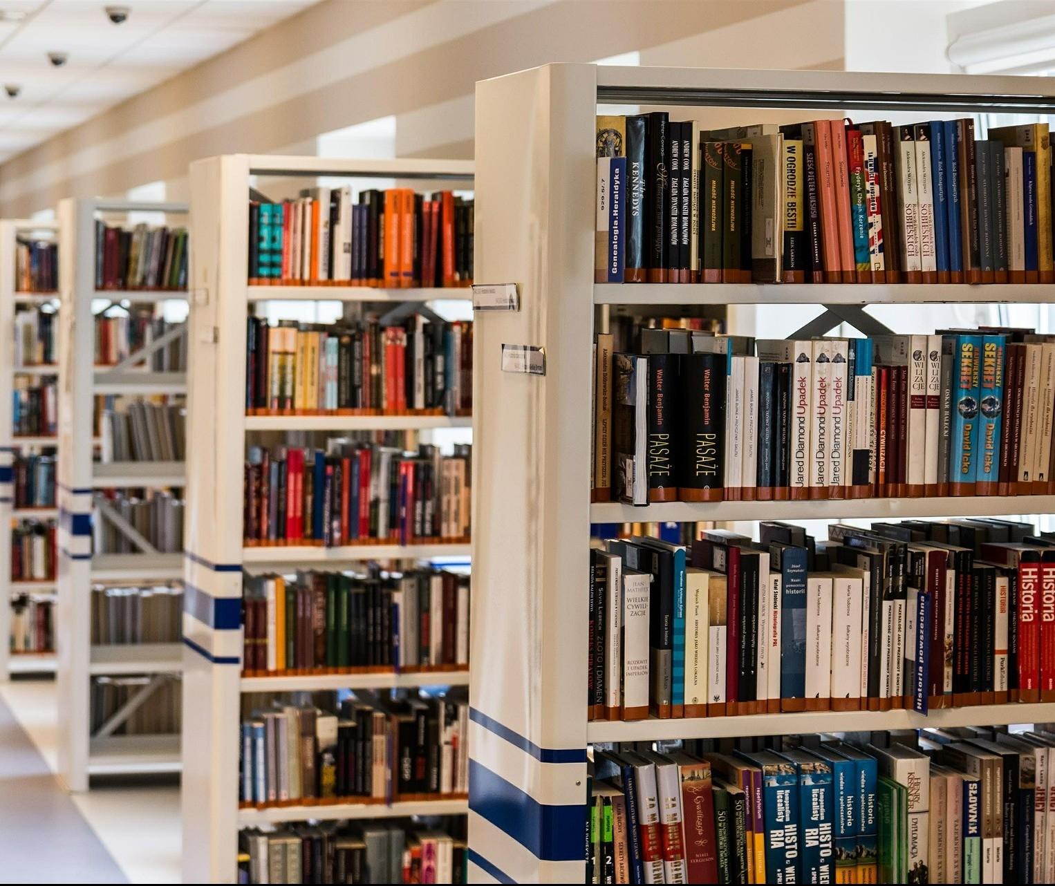 Bibliotecas municipais da cidade têm 400 livros de maringaenses