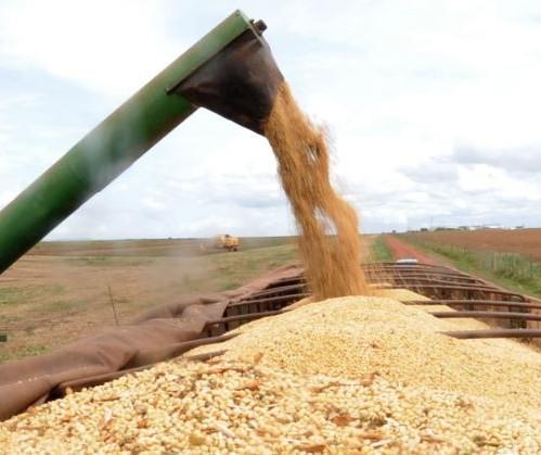 Aumento das tensões entre EUA e Irã pode dificultar exportações de milho do Brasil