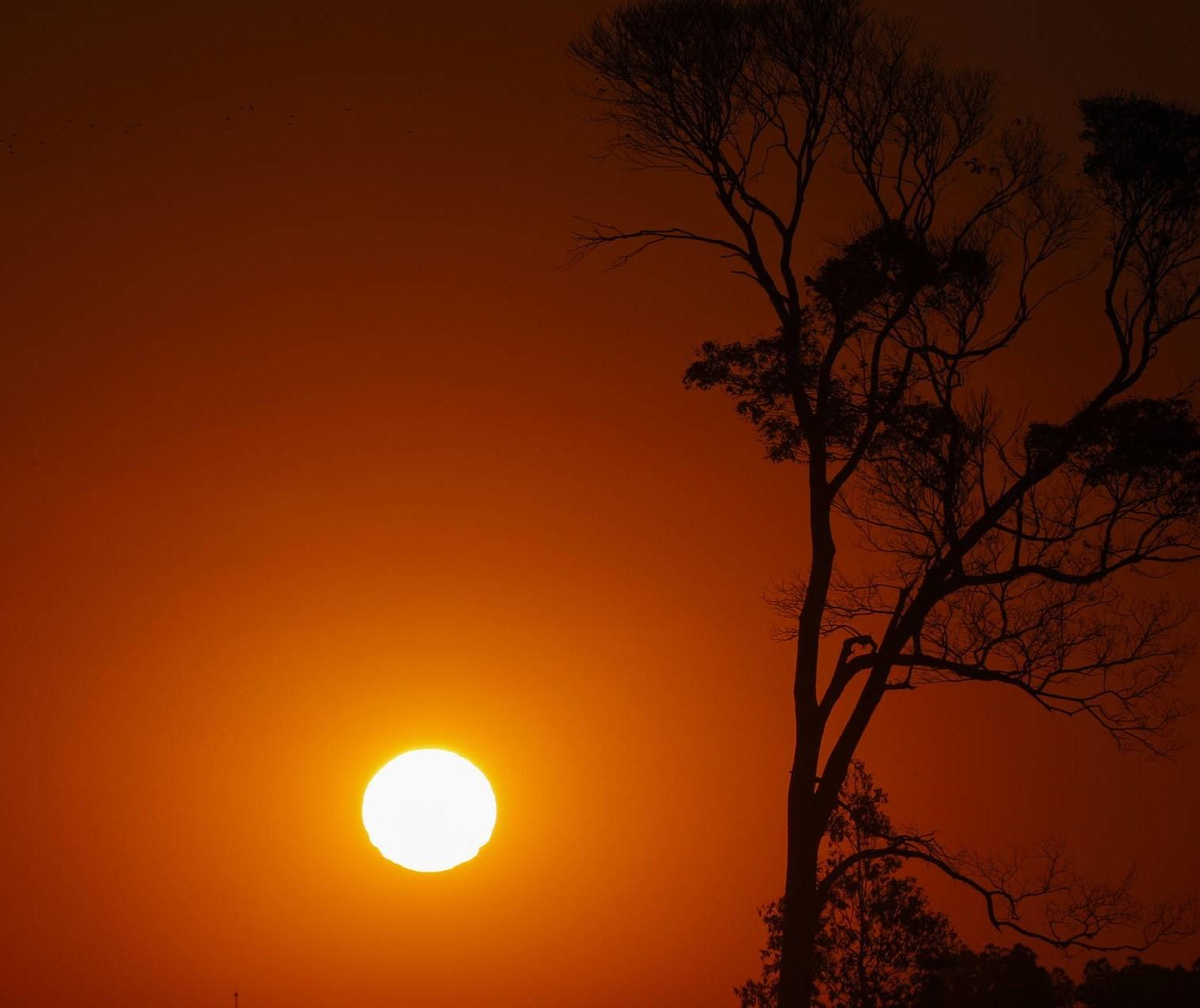 Maringá pode quebrar recorde de temperatura registrado em agosto nos próximos dias