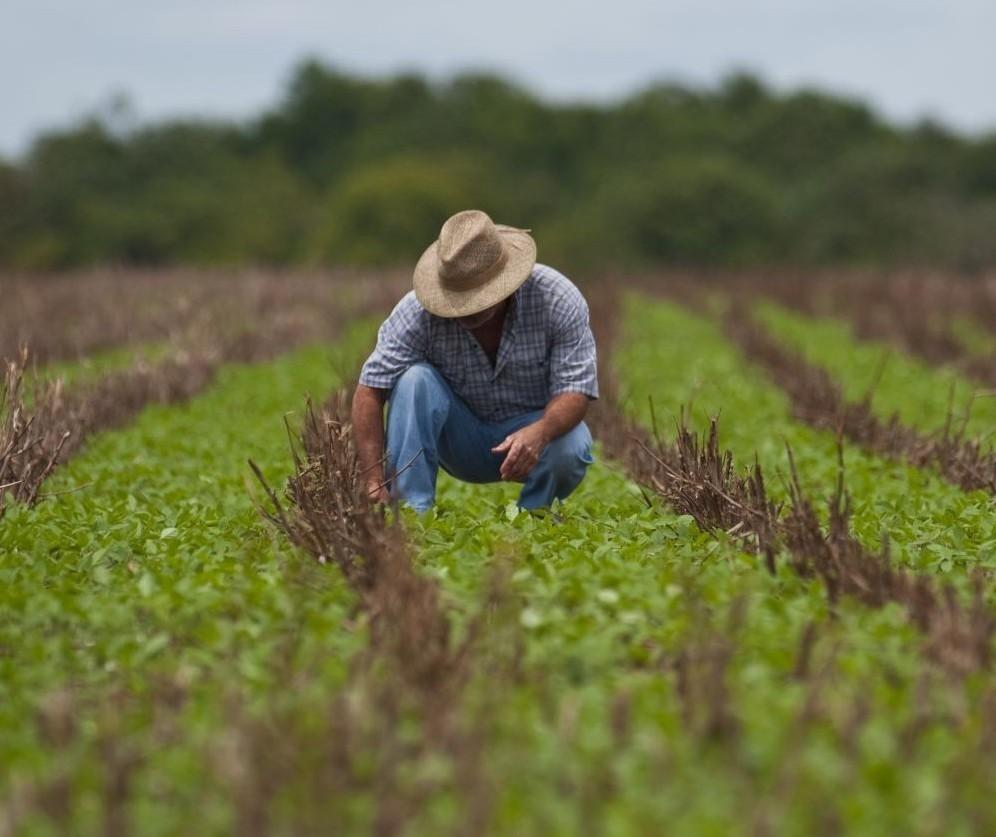 Diretor de crédito agrícola do Sicredi faz balanço de 2019 e início de 2020
