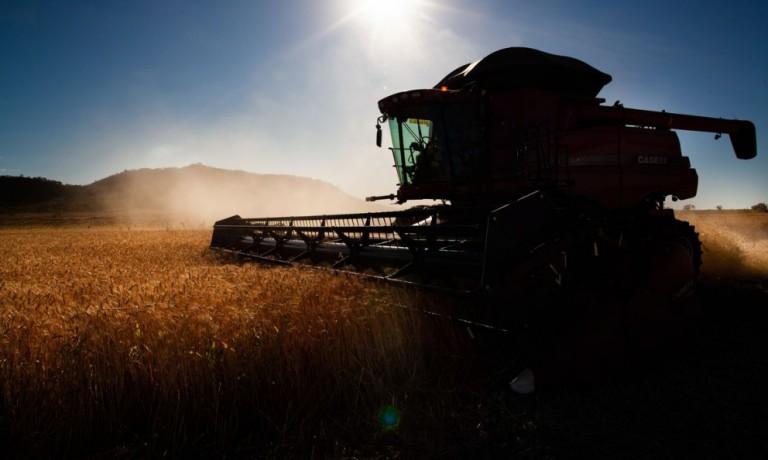 Apesar da pandemia, venda de máquinas agrícolas deve crescer em 2021, diz Abimaq