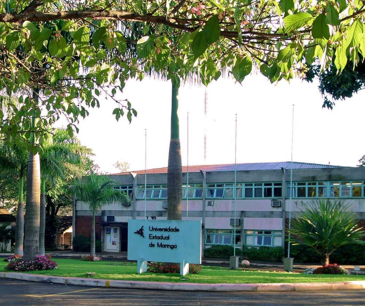 UEM vai ser multada por corte irregular de árvores