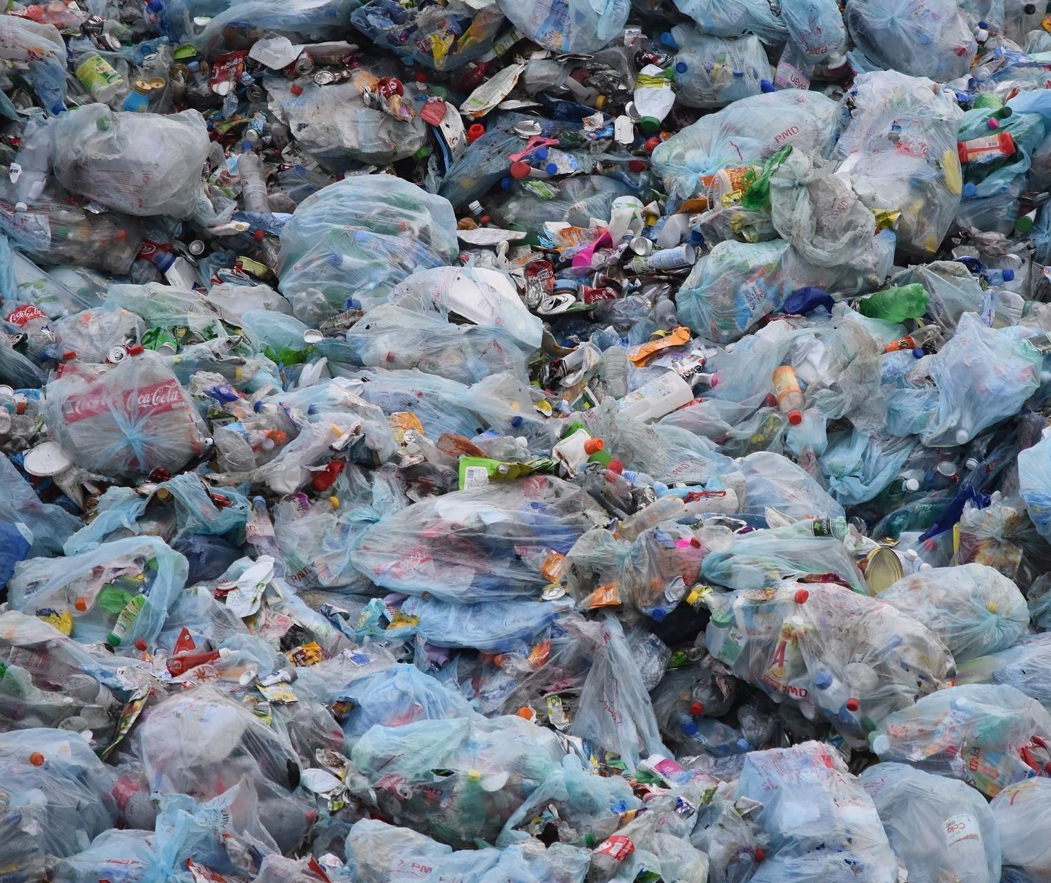 """Multada em R$ 6mi, prefeitura diz que não acaba com lixão por causa da """"Chica"""""""